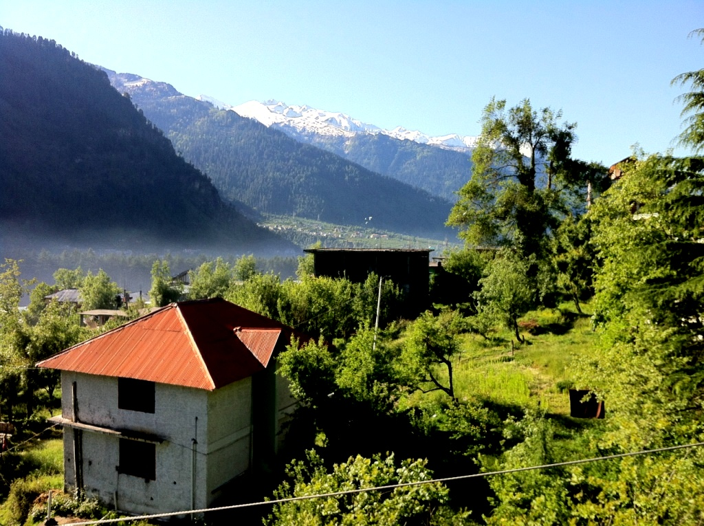 Bright Sunny day in Manali... Apple Farms all around... a bit foggy... what a scene it was