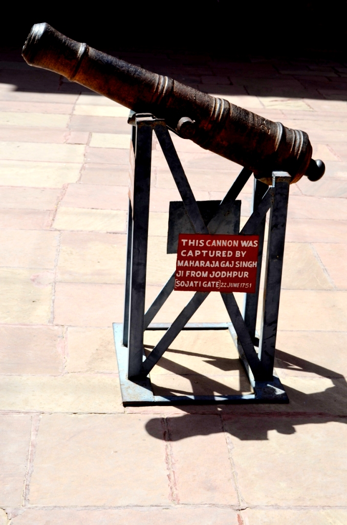 Smallest cannon placed on Camels